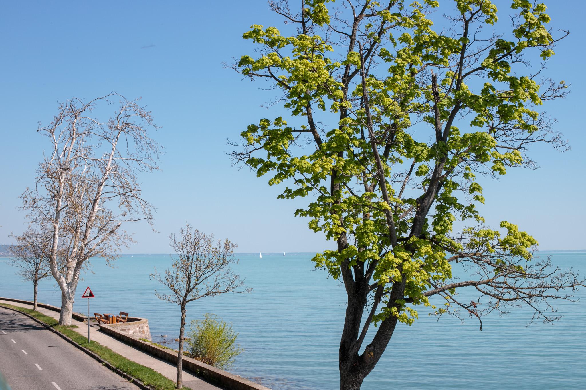 Tihany lake balaton