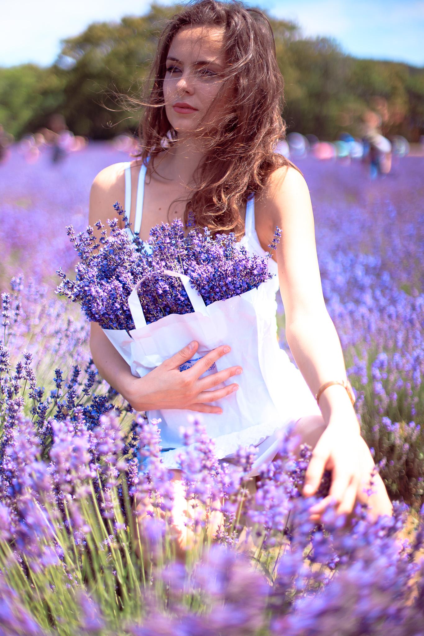 Lavender Fields Budapest