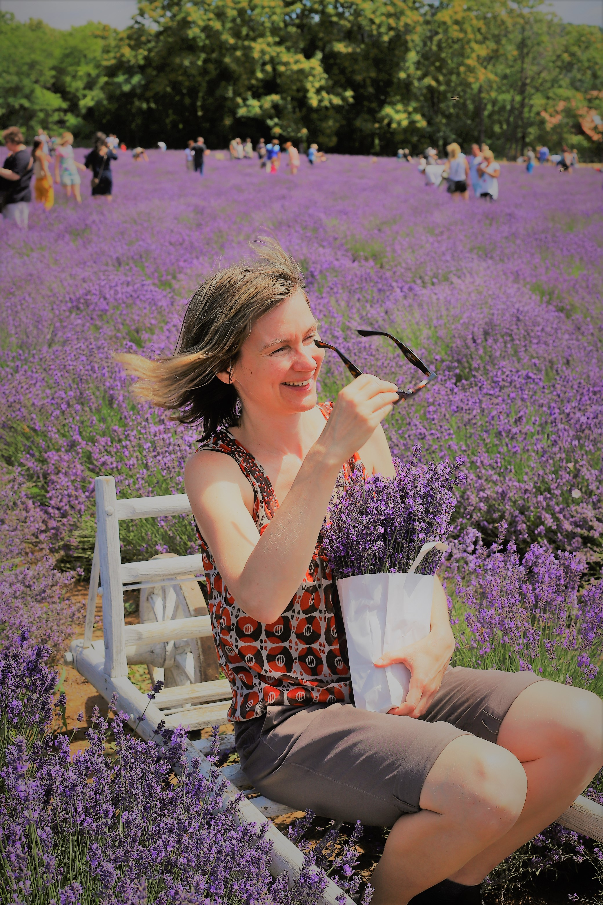 Lavender Photo Shoot