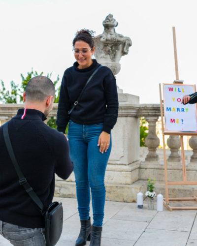 surprise proposal videographer